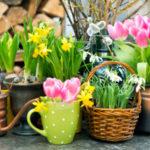kvetiny-anna-design-jaro